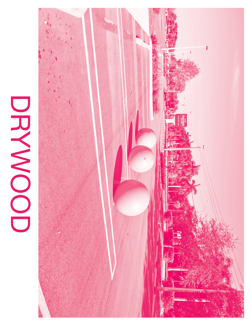 5_DRYWOOD